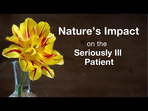 Nature's Impact on the Seriously Ill Patient