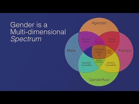 Female to Male Gender Affirming Surgery: Options, Challenges, State of the Art Surgical Techniques, and Outcomes